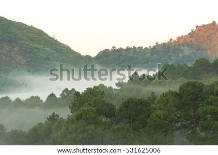 Beautiful cooling moment with foggy and cloudy view of mountains.