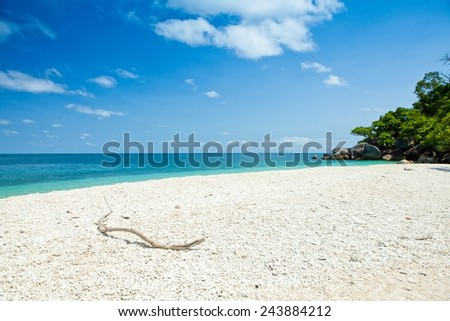 beautiful coral beach -Fitzroy island, Australia - stock photo