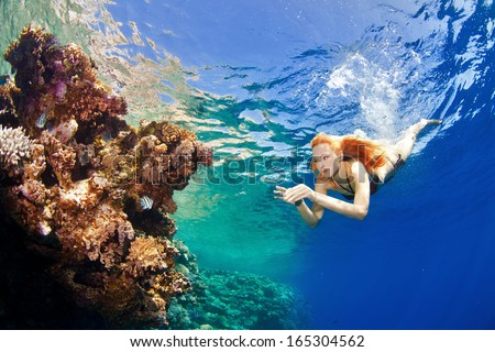 beautiful corals in the sea - stock photo