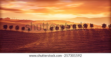 Beautiful countryside landscape, amazing orange sunset over golden soil hills, beauty of nature, agriculture and farming season, Tuscany, Italy - stock photo