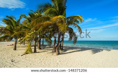 Beautiful Crandon Park Beach located in Key Biscayne in Miami. - stock photo