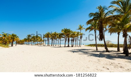 Beautiful Crandon Park Beach located in Key Biscayne in Miami.