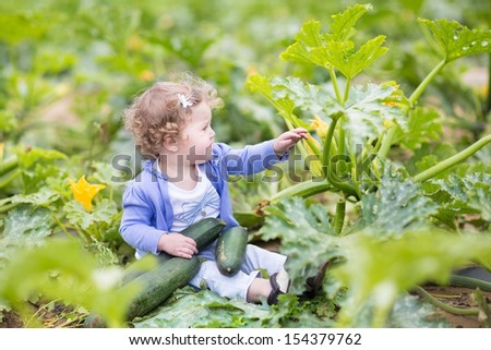 Beautiful curly baby girl sitting in a farm field next to a zucchini plant gathering ripe vegetables in autumn by nice sunny weather - stock photo