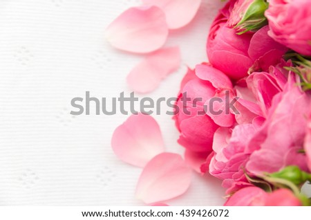 Beautiful, delicate, pink roses and rose petals on a light background, a beautiful background for cards, place for text, wedding card - stock photo