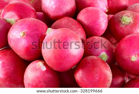 Beautiful delicious red radish photographed close up