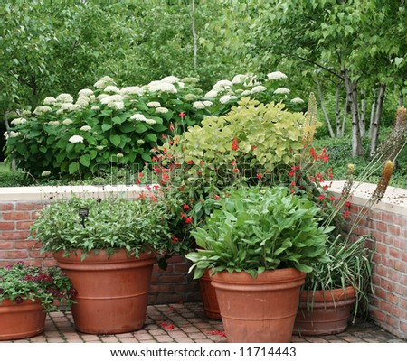 Beautiful display of pots and flowers - stock photo