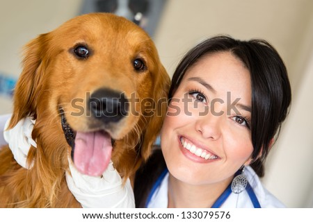 Beautiful dog paying a visit to the vet - stock photo