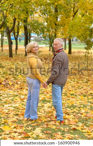 beautiful elderly couple spends time outdoors - stock photo