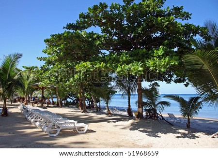 Beautiful empty Roatan resort beach with lounge chairs in the Caribbean.