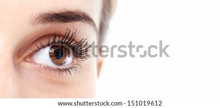Beautiful eye close up. Isolated on white background. - stock photo