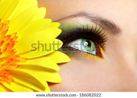 Beautiful Eye Makeup with gerber flower - stock photo