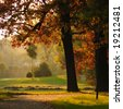 Beautiful fall colors - stock photo
