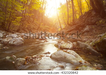 Beautiful Fall river lines with rocks and trees. Autumn creek woods with yellow trees foliage and rocks in forest mountain. - stock photo