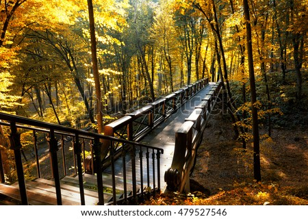 Beautiful fall scene in a park with wooden bridge above ravine with golden trees