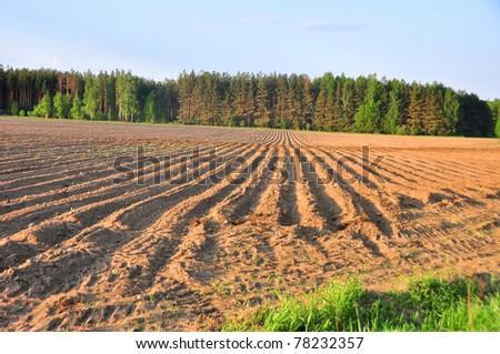 beautiful farmland landscape - stock photo