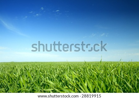 Beautiful farmlands with lovely clouds and green grass - stock photo