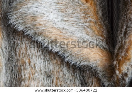 beautiful faux or artificial fur coat orange and grey color as fashionable fluffy background, closeup