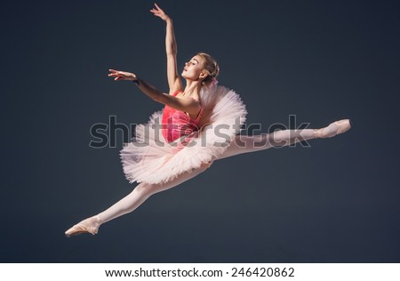 Beautiful female ballet dancer on a grey background. Ballerina is wearing  pink tutu and pointe shoes - stock photo