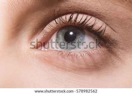 Beautiful female eye, grey color look, with eyelashes and natural makeup on young skin background