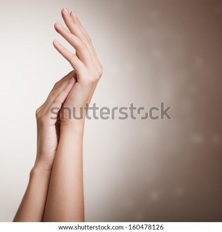 Beautiful Female Hands. - stock photo