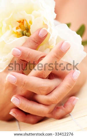 beautiful female hands with white rose - beauty treatment