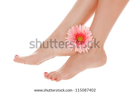 beautiful female legs with pink gerbera flower, isolated on white background