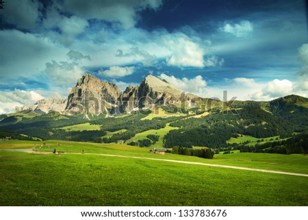 Beautiful fields in the Alps - stock photo