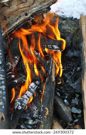 Beautiful fire flames - burning in the wood in the winter. - stock photo