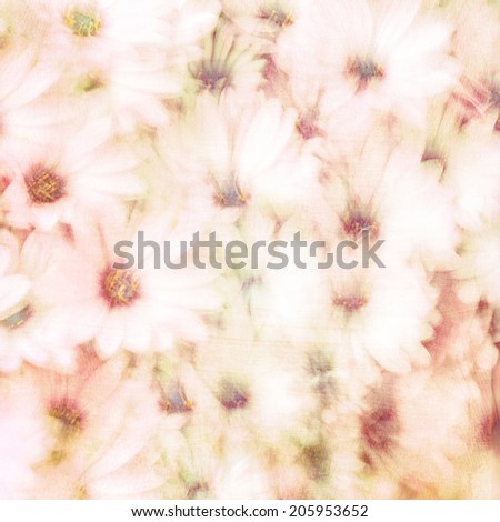 Beautiful floral background, abstract natural texture, gentle daisy flowers, fine art, blooming nature, tender flowery wallpaper  - stock photo