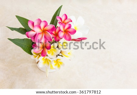 Beautiful flower plumeria or frangipani decorated in lovely heart pattern cup