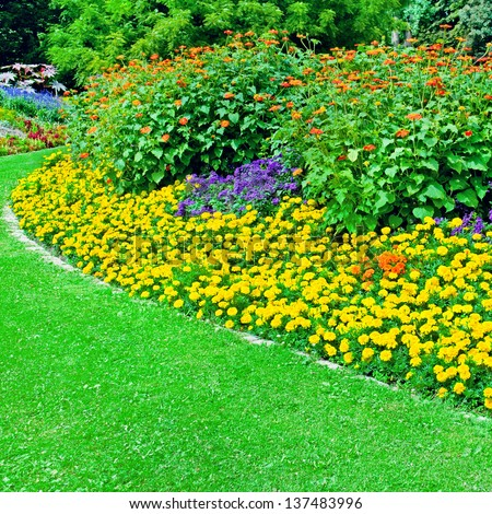 Beautiful flowerbed in summer park - stock photo