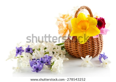 Beautiful flowers in basket isolated on white
