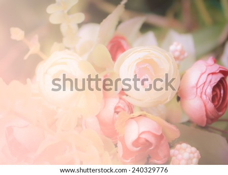 beautiful flowers made with color filters  in soft style for bac