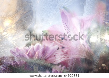 beautiful flowers with ice texture - stock photo