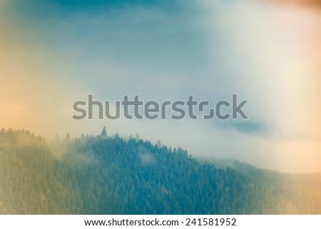 Beautiful foggy landscape in the mountains.  Filtered image:cross processed lighting leak - instagram.  - stock photo