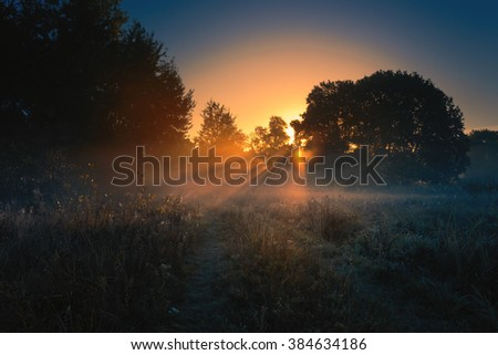 Beautiful foggy sunrise landscape. - stock photo