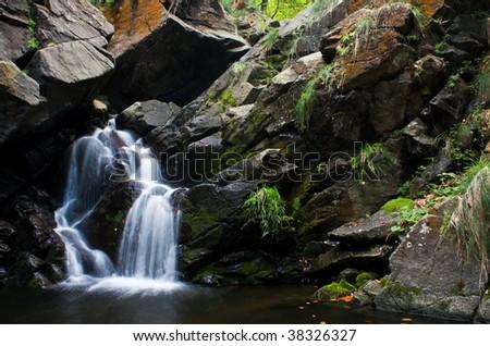 Beautiful forest waterfall - stock photo