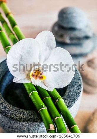 Beautiful fragile white orchid and fresh green bamboo stems lying across a stone container with stacked spa stones visible behind depicting alternative treatment and therapy at a health resort or spa - stock photo