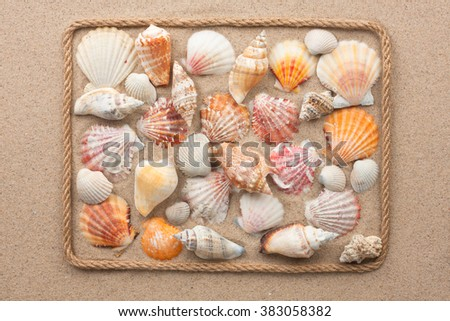 Beautiful frame of rope and sea shells on the sand, as background - stock photo