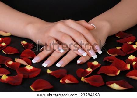 Beautiful french manicure and rose petals - stock photo