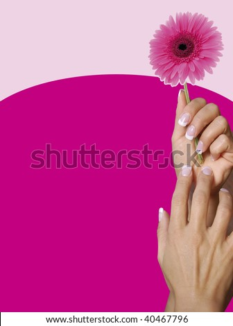 Beautiful french manicured hands holding flowers