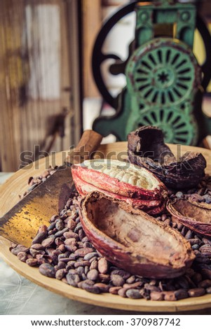 Beautiful fresh cocoa beans and cocoa seeds on the wooden tray - stock photo