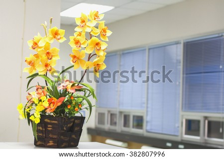 Beautiful fresh flowers in the office For background. Soft focus.