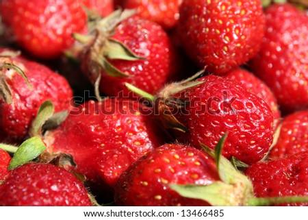 Beautiful fresh strawberries - stock photo