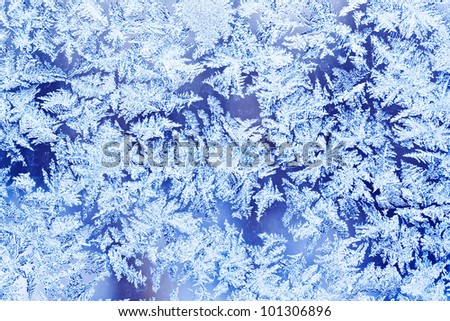 Beautiful frost pattern on a winter window - stock photo