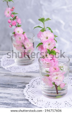 Beautiful fruit blossom in glass on table on grey background