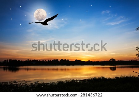 beautiful full moon after sunset on the river and Silhouette of eagle flying on sky - stock photo