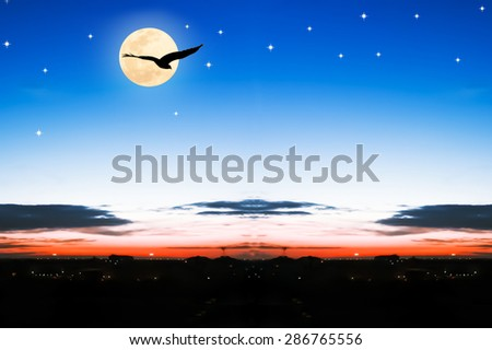 beautiful full moon on the sky in the city at night  - stock photo