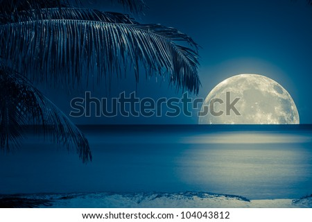 Beautiful full moon reflected on the calm water of a tropical beach (toned in blue) - stock photo
