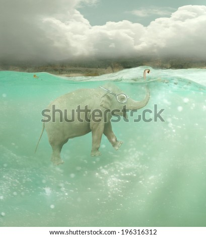 Beautiful funny elephant swimmer underwater with a landscape in the background - stock photo